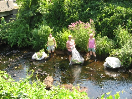 Heather Cameron, Michelle Walsh & Dona Neely removing Purple Loosestrife