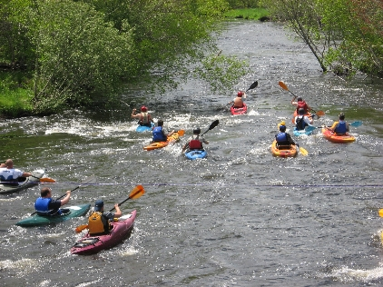 Group of kayak racers on the river