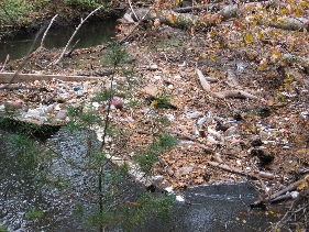 Trash at Blackstone Canal