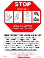 "DCR Boat Ramp Sign ""Stop the spread of nusiance aquatic plants and animals"""