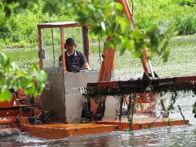 2012 Rice City Water Chestnut Harvest- Harvester in Operation